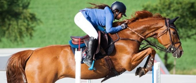 Pauses in Speech - Don't rush like a jokey, pause like a show jumper.